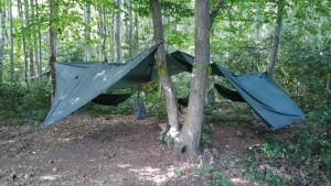 hammock 4